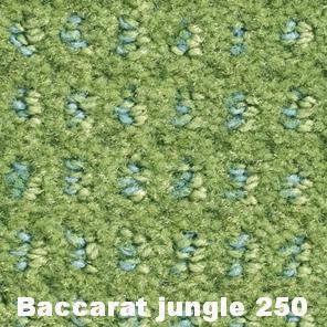 Baccarat Jungle 250